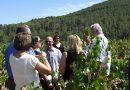"""Las cinco bodegas de MGWines Group han obtenido el reconocimiento """"Q Calidad Turística"""""""