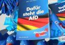 Alternativa para Alemania se convierte en la tercera fuerza del Bundestag