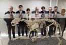 Una nueva vida para el Museo de Historia Natural con mirada comarcal