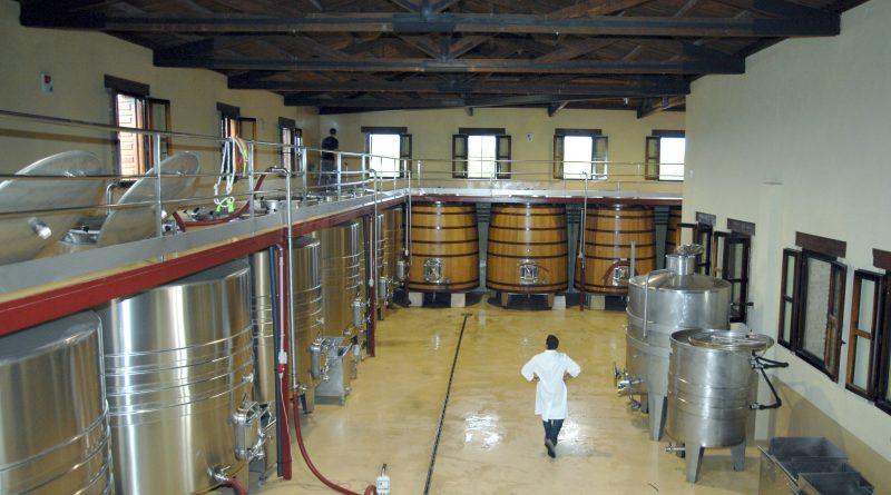 El Consell convoca las ayudas a inversiones en bodegas del programa de apoyo 2019-2023 al sector vitivinícola español