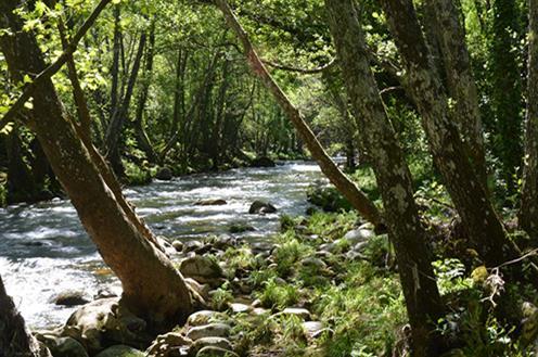 Agricultura invierte 29 millones en el seguimiento de las aguas superficiales de las cuencas de Tajo, Guadalquivir y Ebro