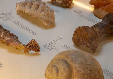 El Palau presenta 'Testimonio gráfico de un territorio, símbolo de un pueblo', un recorrido por la huella gráfica de los pobladores valencianos