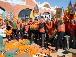 AVA-ASAJA y FEPAC-ASAJA advierten que darán a conocer los nombres de los comercios que importan y venden naranjas foráneas en plena crisis citrícola