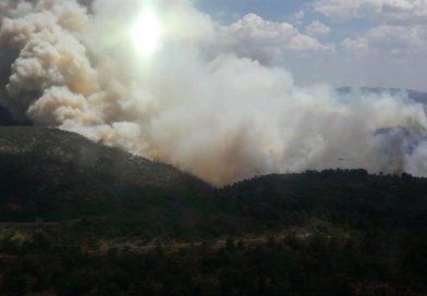 El incendio forestal de Beneixama arrasa 830 hectáreas