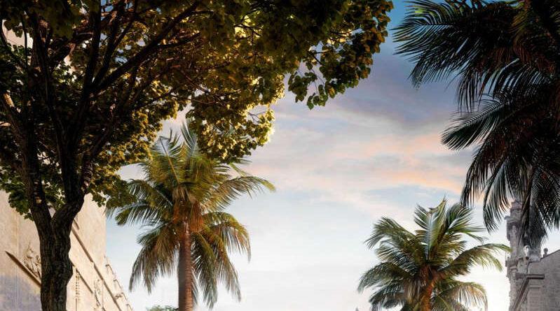 El entorno de la Lonja y del Mercat se reformará en cuatro fases