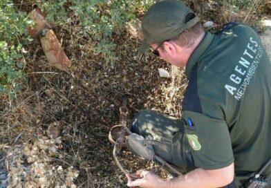 Las agresiones a los Agentes Medioambientales no le preocupan a la Conselleria